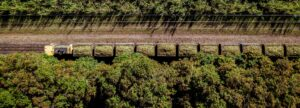A aerial photo of a sugarcane field with a harvester carrying cut canes photo credit Josh Withers