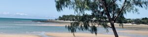 A picture of Eimeo beach in Mackay, the water is blue, the tide is out and a tree in the foreground